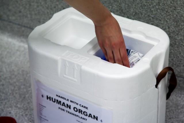 Terugblik themabijeenkomst neurotrauma en orgaandonatie