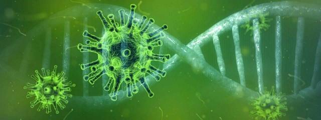 Coronavirus algemene informatie